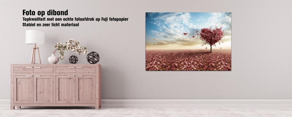 Online kunst kopen in de vorm van een foto op dibont.